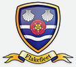 Flakefleet